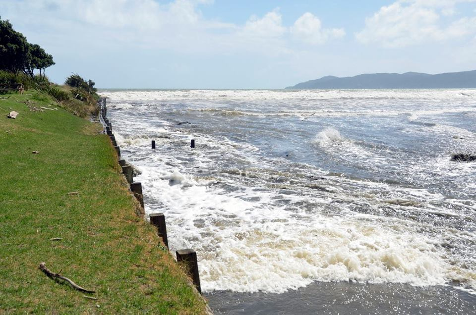 Tide surge on the Wharemauku Stream